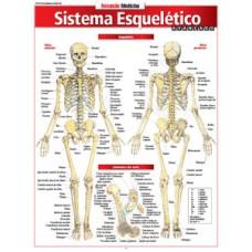 Resumao - Sistema Esqueletico Avancado