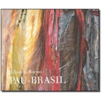 Pau-Brasil. História do Brasil
