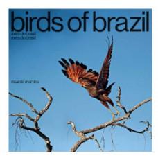 Birds of Brazil / Aves do Brasil