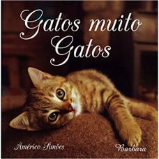 Gatos Muito Gatos
